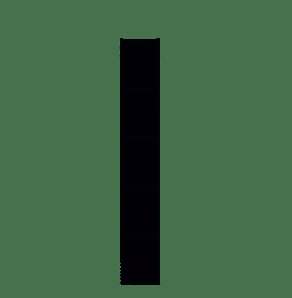 MEDIANA Hängeregal graphit matt B/H/T ca. 20/125/20 cm
